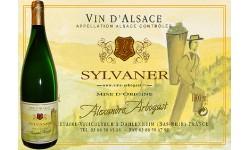 Sylvaner 100 cl